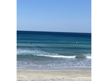 サーフィンスクールレポート
